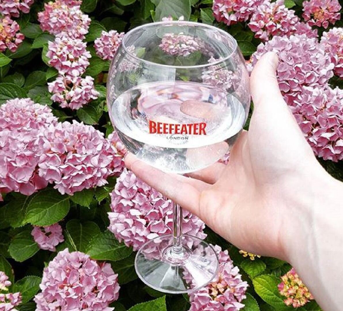 Cheers to Beefeater London Dry Gin